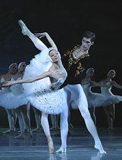 Le Lac des Cygnes : un opéra à voir !