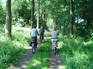 Le cyclotourisme : facteur de bien-être et de santé