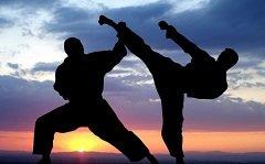 Arts-martiaux